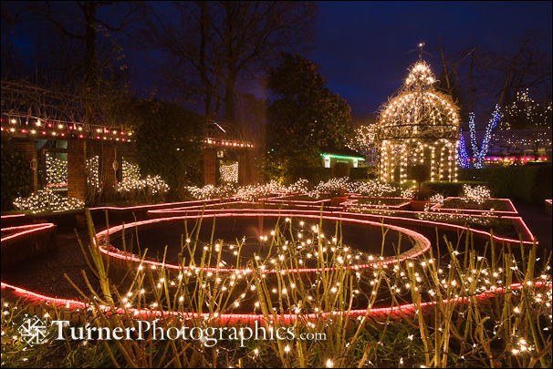 Holiday Lights at Park & Tilford Garden