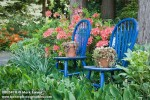 0805410 Blue chairs among Lily-of-the-Valley foliage, Azalea in woodland garden [Convallaria majus; Rhododendron cv.]. Gilliam, Ferndale, WA. © Mark Turner