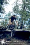 Daniel Mountain Biking
