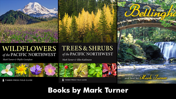 Books by Mark Turner