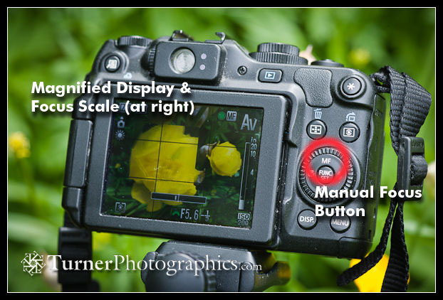 digital photo tip manual focus and a tripod for details turner rh turnerphotographics com canon g12 manual focus Canon G7X
