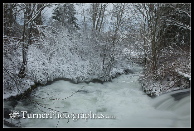 Whatcom Creek framed by snow-covered trees