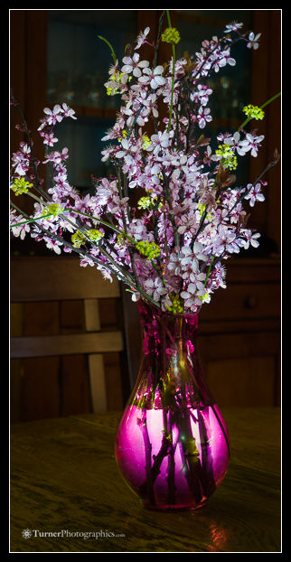 Purple-leaf Plum blossoms in red vase