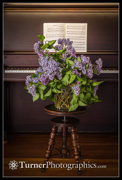 Vase of purple Lilacs on piano stool